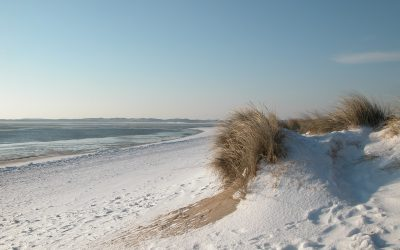 winter-2281470_1920